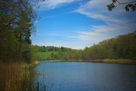 Olana's lake - Julia Thomas