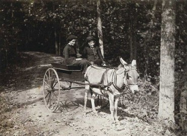 Downie Church and her grandmother, Emma Carnes, in a donkey cart at Olana, photograph by Robert and Emily de Forest, October 11, 1884, 9 3/8 x 11 inches, Olana State Historic Site,  OL.1982.1520