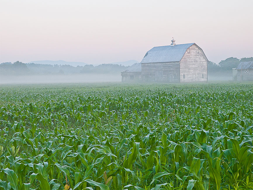 Farm: Agricultural Life of the Hudson Valley – Photographs by Brandt Bolding