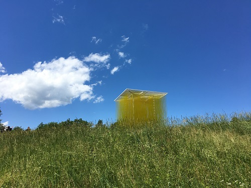 SEEING YELLOW AT OLANA: A Photo-Essay